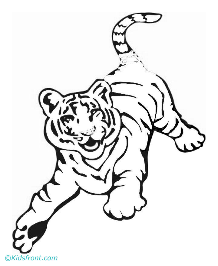 Female tiger drawing for White tiger coloring pages