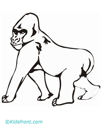 Gorilla Coloring Page | african-animals