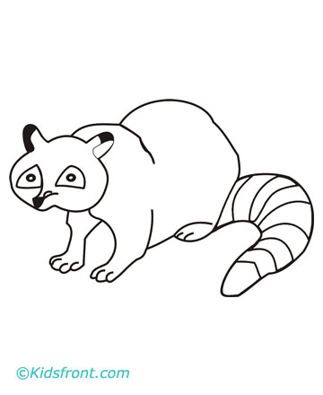Raccoon coloring pages printable for Racoon coloring page