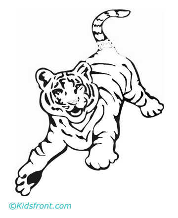 Coloring pictures of white tigers coloring page for White tiger coloring pages